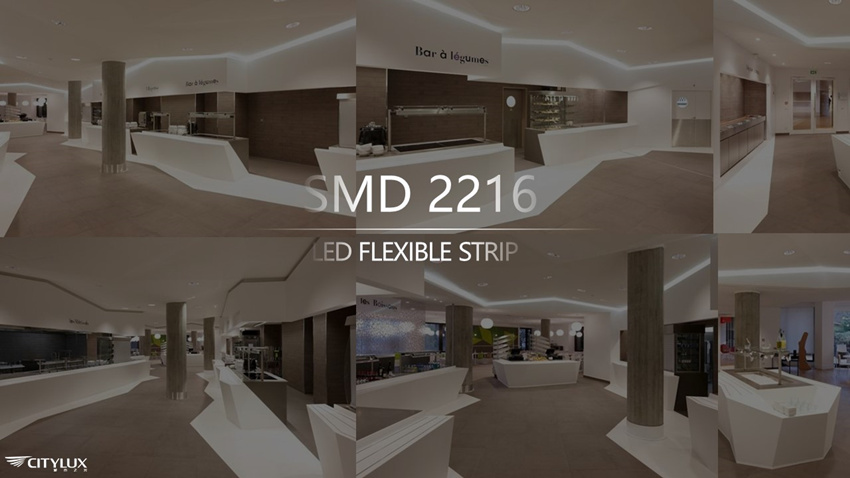 5-Year Warranty SMD 2216 LED Flexible Strip